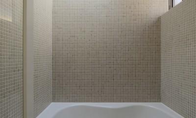 明大前の家 (トップライトを設けた明るい浴室)