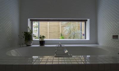 都心で庭を愛でる戸建〜数年にわたるリノベーション (浴室)
