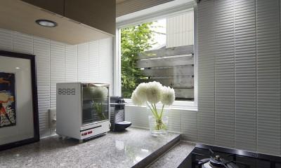 都心で庭を愛でる戸建〜数年にわたるリノベーション (キッチン)