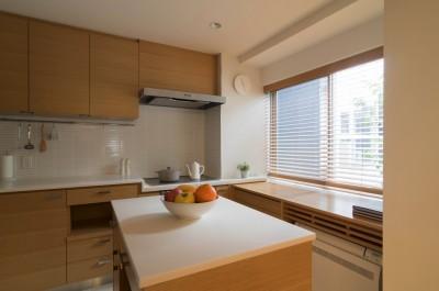 キッチン (4階建てビルを快適な住宅にコンバージョン〜公園横の家〜)