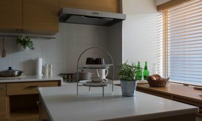 4階建てビルを快適な住宅にコンバージョン〜公園横の家〜 (キッチン)