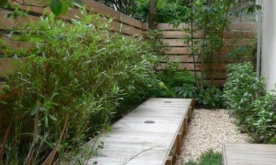 都心で庭を愛でる戸建〜数年にわたるリノベーション (庭)