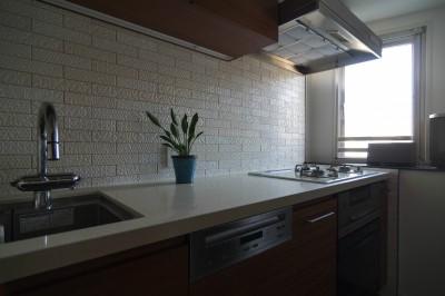 キッチン (漆喰と輸入クロスを使ったマンションリノベーション)