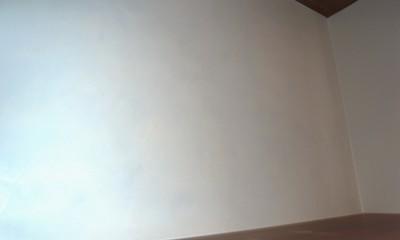 単身女性のためのたっぷり収納、シンプルリノベーション (玄関にイタリア漆喰カルチェラザータ)