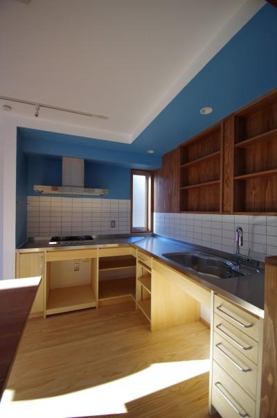 キッチン2 (かもめ食堂のようなキッチンの家.柏市K邸)