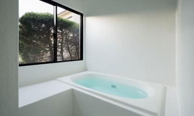 MOR  |  東中野の家 (風呂)
