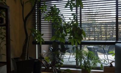 太陽と風〜様々な素材のレイヤーを楽しむリノベーション (窓周り)