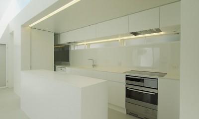 高窓のコートハウス (キッチン)