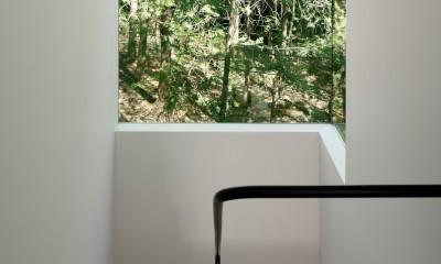 064御代田Nさんの家 (階段)