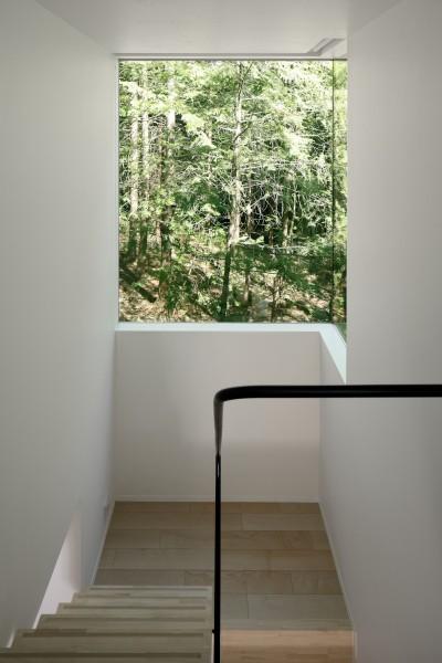 階段 (064御代田Nさんの家)