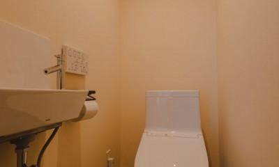 カフェ風キッチンのある家 (トイレ)