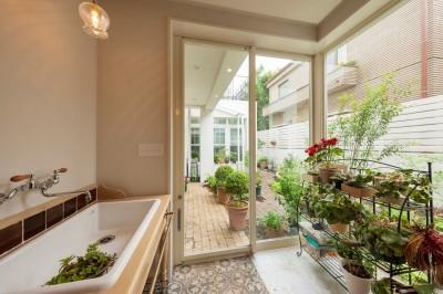 サンルーム (花と過ごす都会の家~賃貸併用二世帯住宅)
