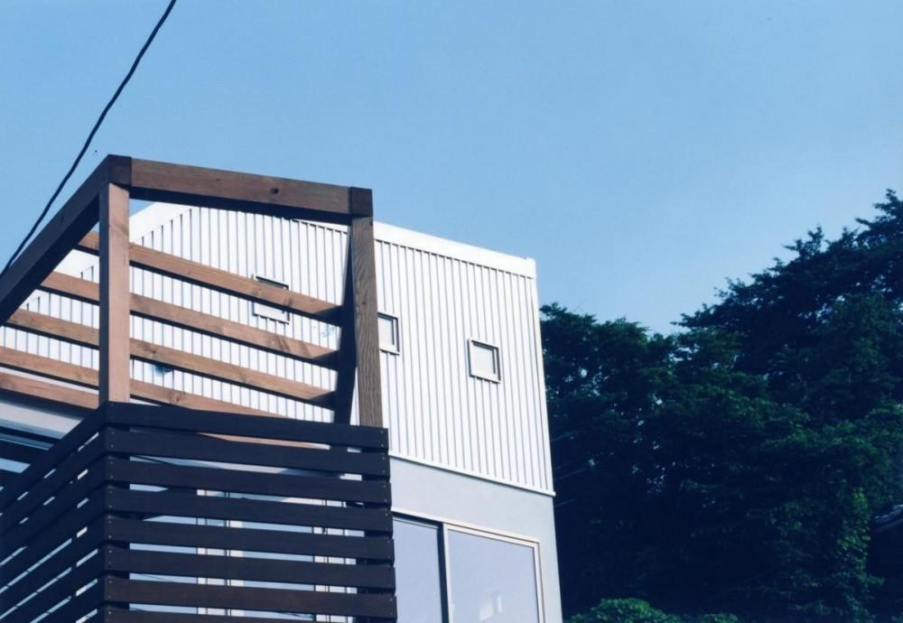 藤が丘の家・A邸 (外観3)
