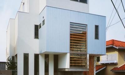 田奈の家 (外観1)