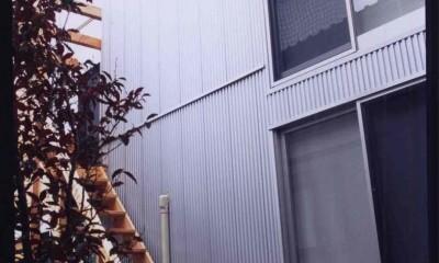 藤沢の家 (外観4)