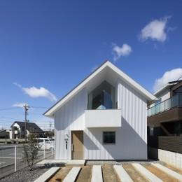 豊橋の家 / ハイサイドライトと坪庭