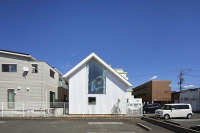 豊橋の家 / ハイサイドライトと坪庭 (外観)