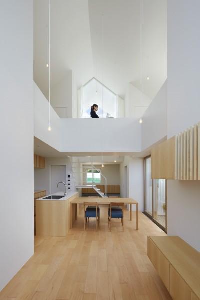 豊橋の家 / ハイサイドライトと坪庭 (LDK)