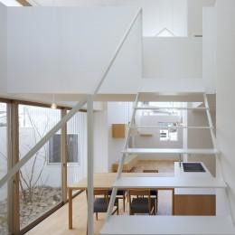 豊橋の家 / ハイサイドライトと坪庭 (階段)