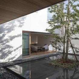 ロードサイドの家 ー幹線道路脇に建つ水盤のある家ー (水盤のある中庭)