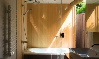 本駒込の家 (本駒込の家 浴室)