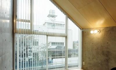 東雪谷の家 (内観13)