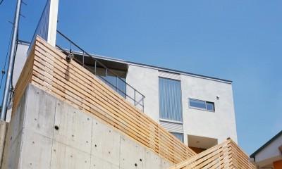 藤沢の家・K邸 (外観2)