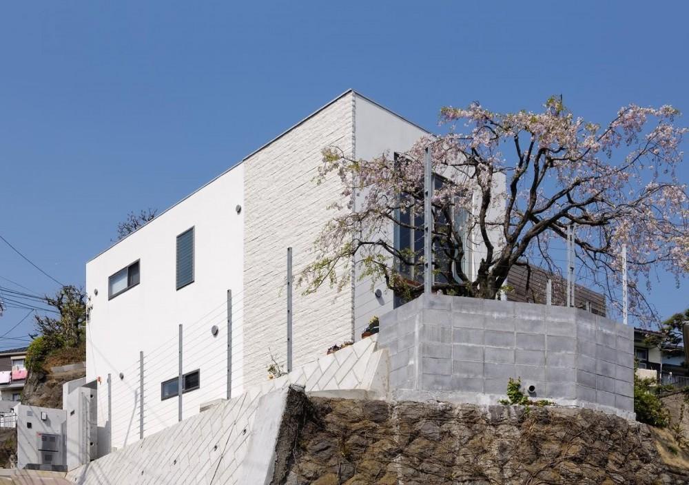 菊名の家 (外観3)