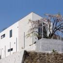菊名の家の写真 外観3