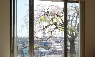 菊名の家 (内観3)
