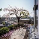 菊名の家の写真 内観4