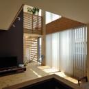 茅ヶ崎の家+ Max Clean Studioの写真 内観11