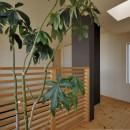 茅ヶ崎の家+ Max Clean Studioの写真 内観17