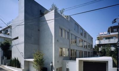 D-FLAT / オーナー住戸付き集合住宅 (全景)