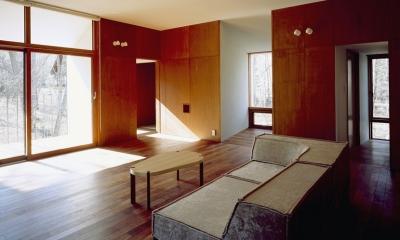 K-Villa / 北軽井沢の別荘 (リビング、テラス、趣味のスペース)