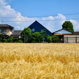 藍いろの家~横葺きのガルバリウム外壁が特徴の家型のおうち。家型フォルムの中の通り土間は家族のお気に入り~ (黄金色の麦畑の中の藍いろの家~四季を通じて風景に馴染む)