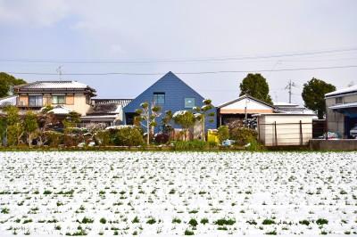 雪景色の中の藍いろの家~四季を通じて風景に馴染む (藍いろの家~横葺きのガルバリウム外壁が特徴の家型のおうち。家型フォルムの中の通り土間は家族のお気に入り~)