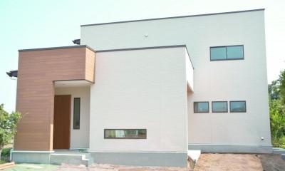 treenk house