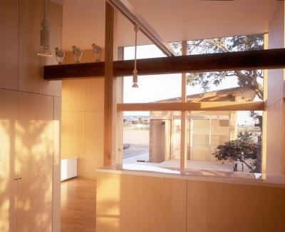 ダイニング、リビング、テラス、音楽室 (小松島の家 / 「間」に住まう)