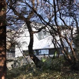 公園前の家 OUCHI-44 (公園の木々の間に見える様子)