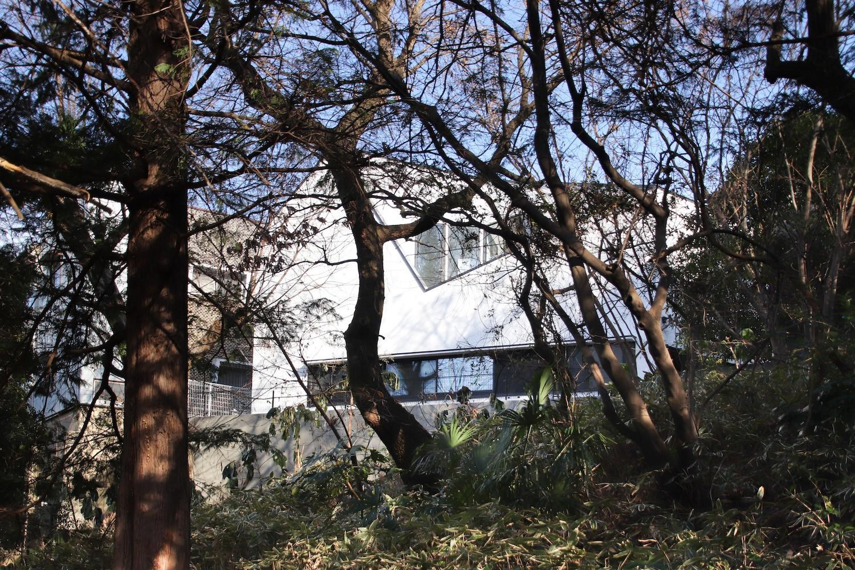 外観事例:公園の木々の間に見える様子(公園前の家 OUCHI-44)