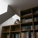 公園前の家 OUCHI-44の写真 猫1号