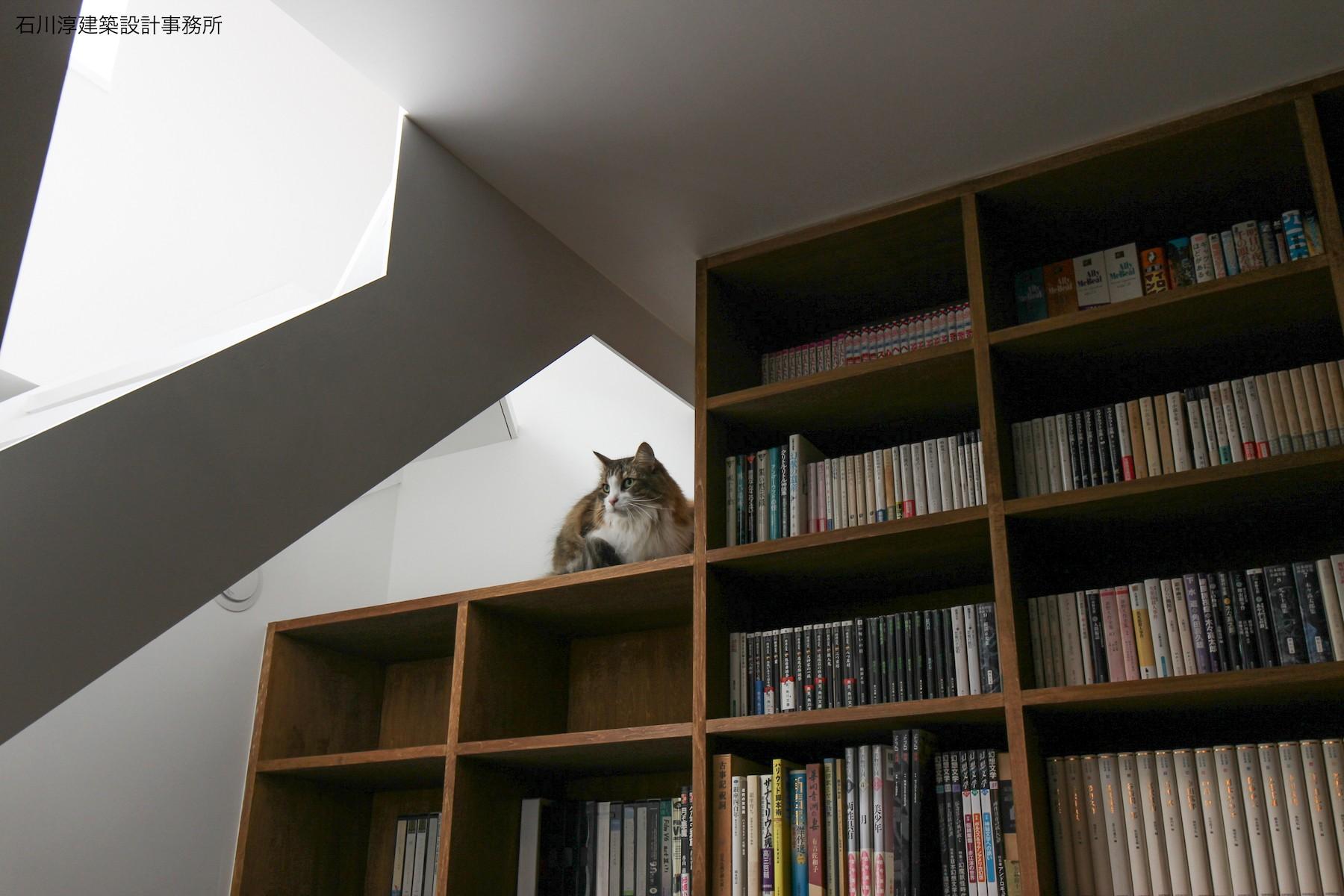 書斎事例:猫1号(公園前の家 OUCHI-44)