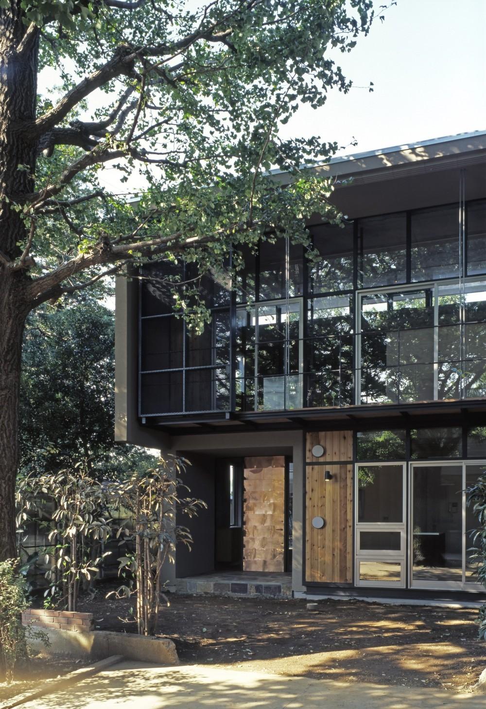 大銀杏の家(二世帯住宅) (外観ディティール)