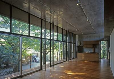 大銀杏の家(二世帯住宅) (2階LDK)
