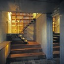 大銀杏の家(二世帯住宅)の写真 玄関