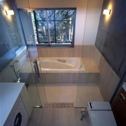 大銀杏の家(二世帯住宅) (洗面浴室)
