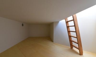 幾何学模様に出会えるまちの家 (傾斜地を利用して設けた床下収納)