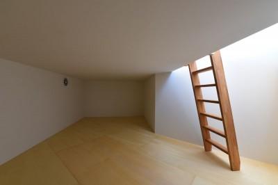 傾斜地を利用して設けた床下収納 (幾何学模様に出会えるまちの家)