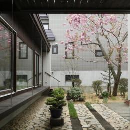 美香保の家 (庭2)